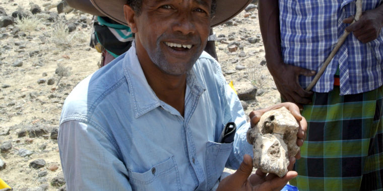 """Early hominin skull completes """"a significant space"""" in the fossil record"""