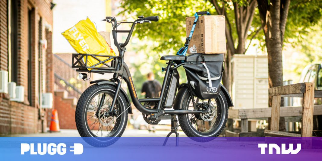 Evaluation: The $1,299 RadRunner is part freight e-bike, part moped, and all enjoyable
