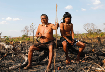 Sensational pictures reveal the truth for native individuals residing in the Amazon as fires burn