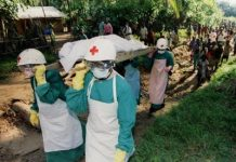 How Ebola went from killing 11,000 folks in a single 12 months to being on the verge of a treatment