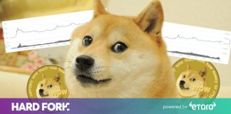 Fulfill the brave devs attempting to take Dogecoin beyond the meme