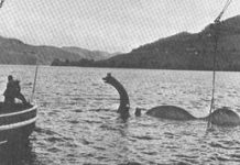 Researcher exposes Sea serpent hunt results, and it's frustrating