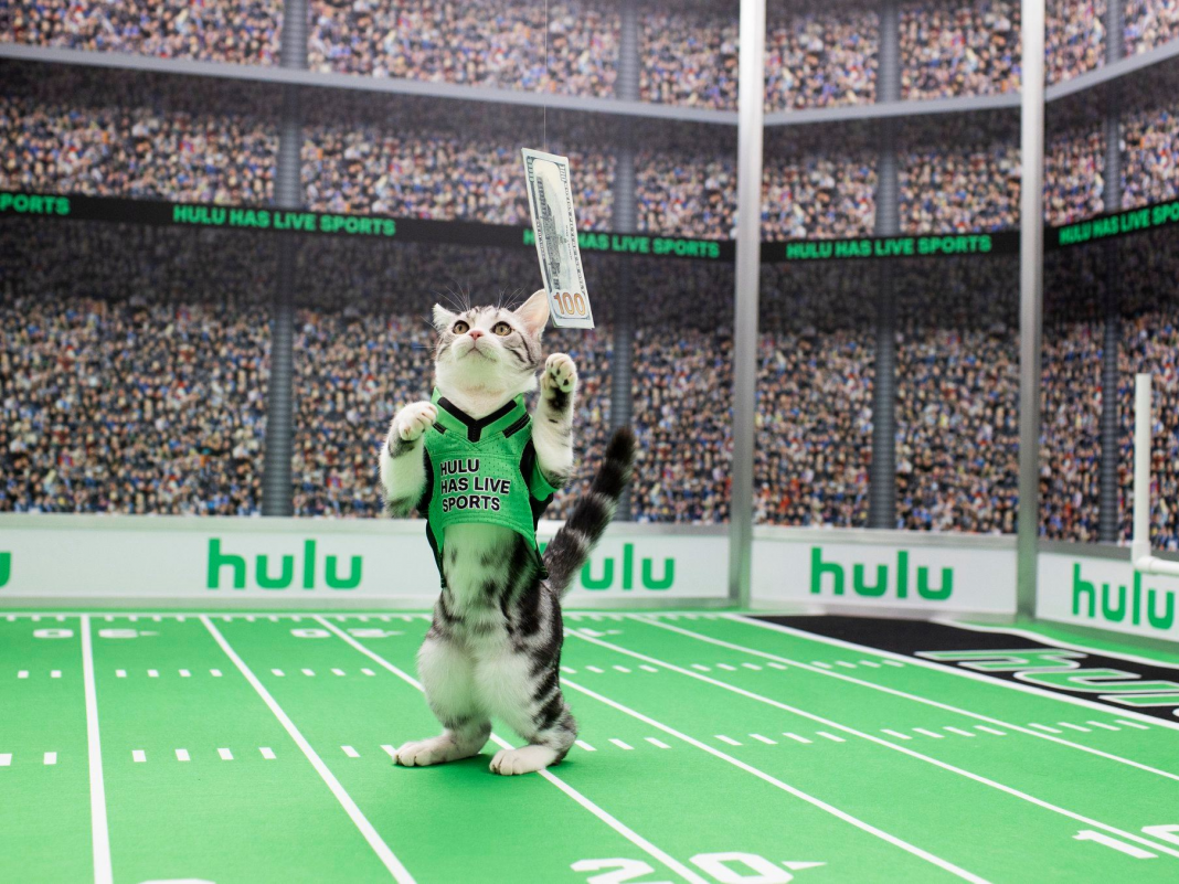 How to enjoy live TELEVISION on Hulu and just how much it costs