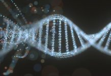 How Gene Modifying Is Altering the World