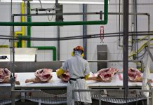 USDA Uses Pork Business A Brand-new Examination Strategy, In Spite Of Opposition