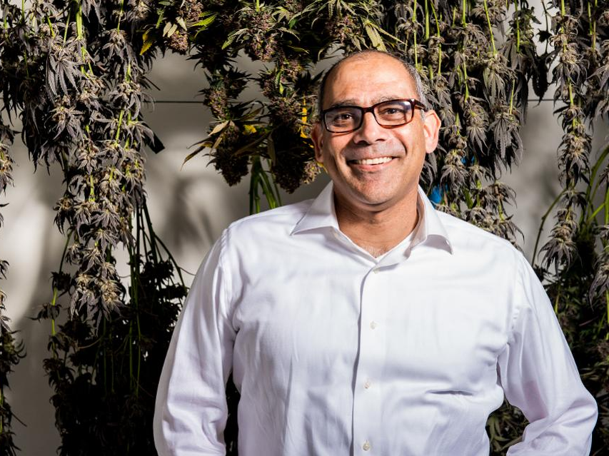 We got a special take a look at the pitch deck that California marijuana business Canndescent utilized to raise $275 million as it muscles into brand-new markets