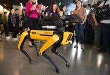 Boston Characteristics' Area robotic wishes to escape and sign up with Cirque du Soleil