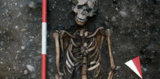 Archaeologists uncover the remains of a middle ages abuse victim