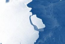 A London-sized iceberg broke off Antarctica, however scientists are chill