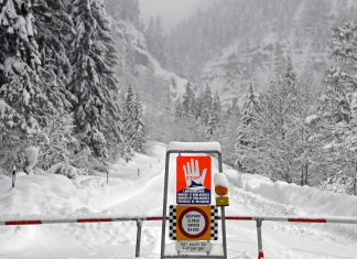 Here's how to make it through an avalanche