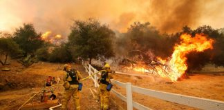 New gel lets us spread out flame retardant prior to wildfires begin