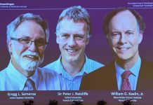 Trio Wins Nobel Reward In Physiology Or Medication For Deal With Cells And Oxygen