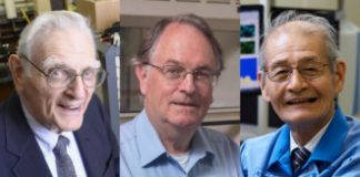 The advancement of the lithium-ion battery has actually won the chemistry Nobel Reward