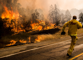 The California power interruptions demonstrate how alarming the wildfire crisis has actually gotten– 9 of the state's 10 most significant fires was available in the last 16 years