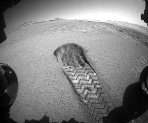 See NASA's Interest rover dig like a pet in the Mars sand