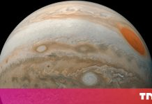 Jupiter's Europa might consist of life– and these objectives intend to discover it