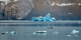 As the Arctic warms up, what remains in shop for its food webs?