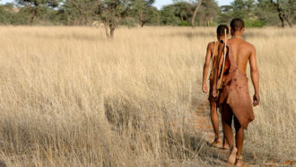 People' maternal forefathers might have developed 200,000 years back in southern Africa