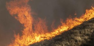 Wildfires Envelop California, With Blame to Spare