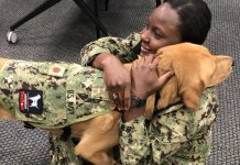 High-Ranking Pet Dog Offers Secret Training For Armed force's Medical Trainees