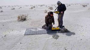 Scientists discover human footprint in a mammoth observe utilizing 3D radar
