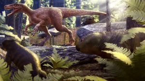 Fossils of the oldest meat-eating dinosaur had been simply found in Brazil