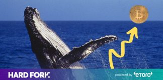 Bitcoin whale moves $310 million cryptocurrency fortune– for simply $0.32