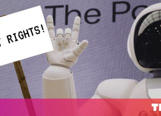 Here's why AI should have the very same rights as animals