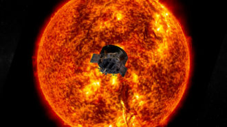 NASA's Parker probe reveals the sun's rogue plasma waves and magnetic islands