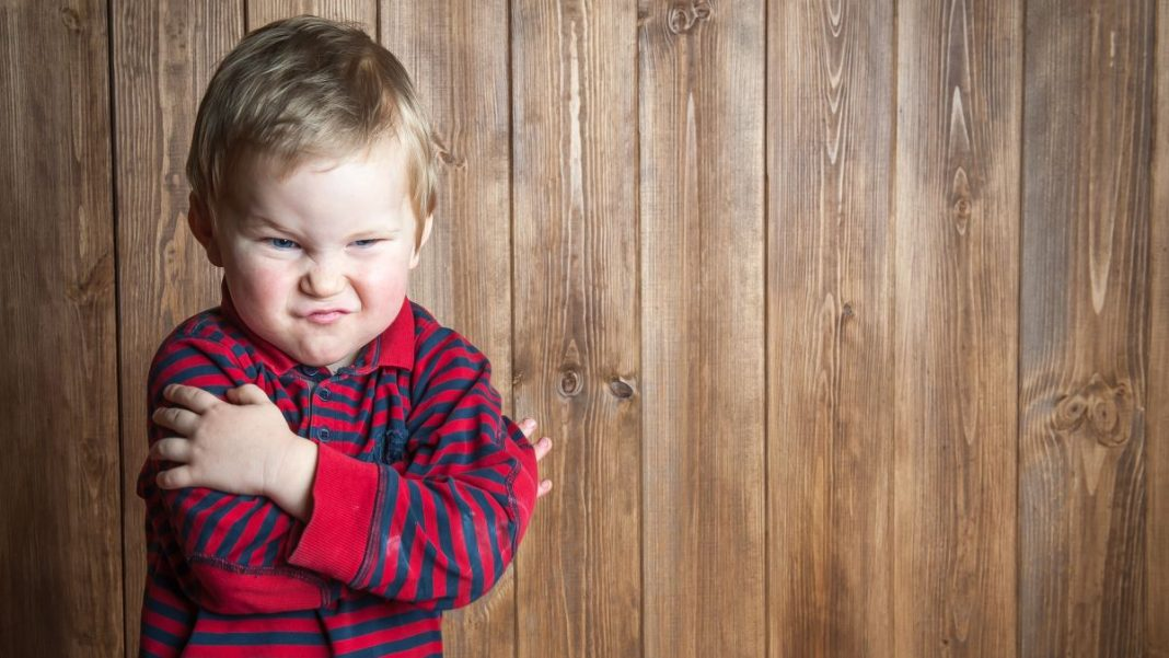 Everything We Learned About Tantrums in 2019