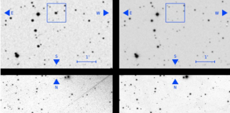 Finding stars that vanished—by scouring old photos