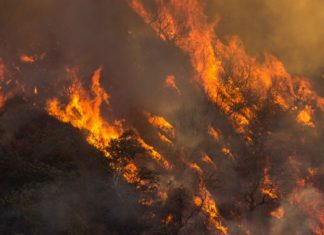 Scientists model dynamic feedback loop that fuels the spread of wildfires