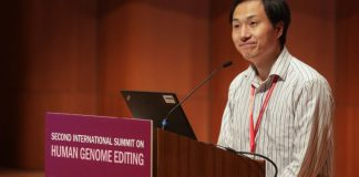 Team that made gene-edited babies sentenced to prison, fined