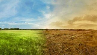 Climate change is bringing earlier springs, which may trigger drier summers