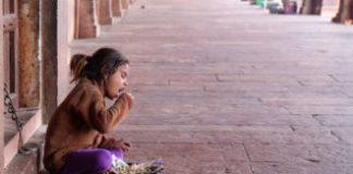 Global progress in combating child malnutrition masks problem spots