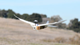 'PigeonBot' is the first robot that can bend its wings like a real bird