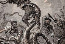 Legendary giant squid's genome revealed