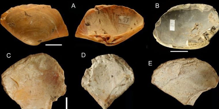 Neanderthals may have been shallow free divers, suggests a new study