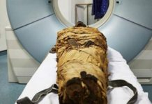 "After 3000 years, we can hear the ""voice"" of a mummified Egyptian priest"
