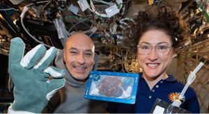 First chocolate chip cookies baked in space have to be vetted for safety