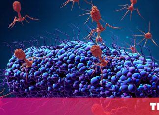 Scientists are reengineering viruses to fight antibiotic resistance