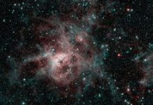 NASA's retiring Spitzer telescope snaps wild last view of Tarantula Nebula