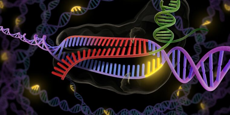 First clinical trial of gene editing to help target cancer