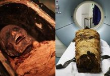 Hear the voice of a real mummy, thanks to 3D printing video