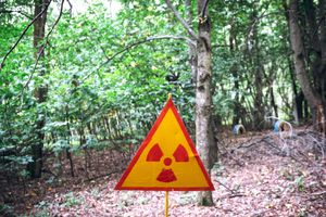 Fungi found in Chernobyl feeds on radiation, could protect astronauts