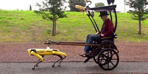 Watch a Boston Dynamics robot dog pull a rickshaw