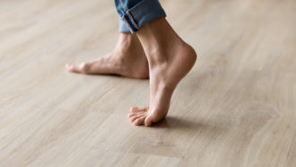 Evolving an arch across the foot's width helped hominids walk upright