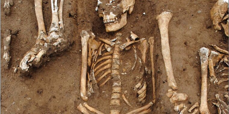 Mass grave reveals how Black Death impacted rural England