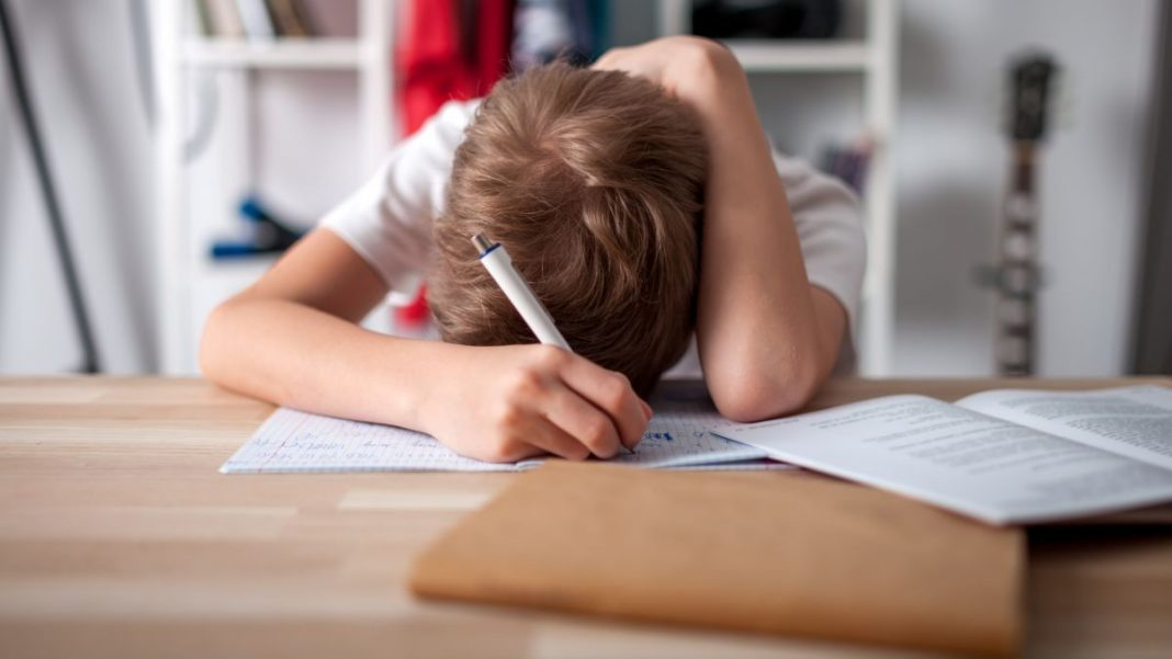 Here's How Much Time Kids Should Spend on 'Remote Learning'