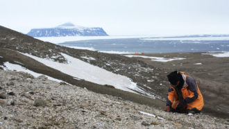 The first frog fossil from Antarctica has been found
